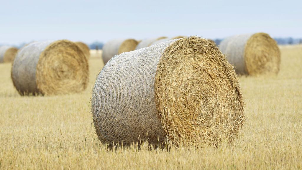 The Australian Farmland Property Index was launched recently at the Australian Farm Institute Roundtable Conference.