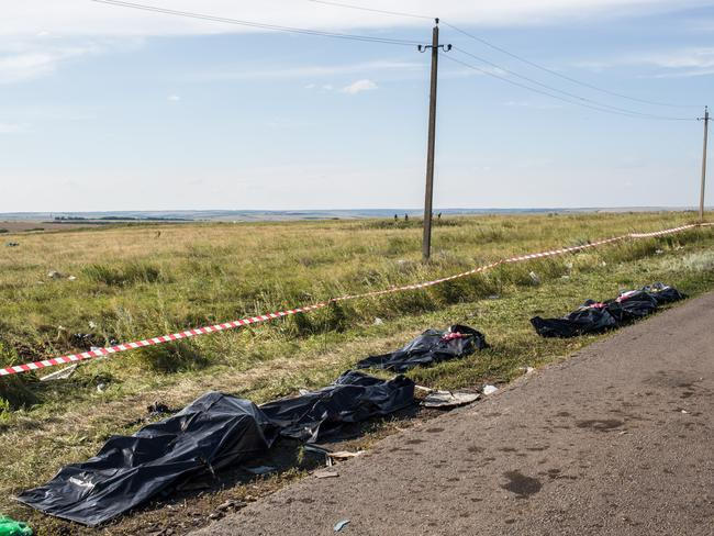 Sheer horror ... Bodies lie on the side of the road at the MH17 crash site.