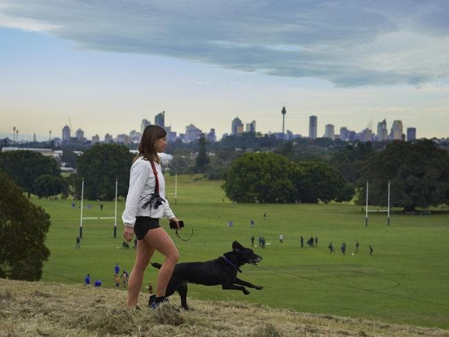 Moore Park With A View Picture Centennial Parklands Sydney