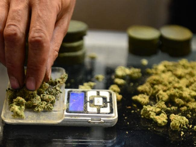 Medicinal ... a vendor weighs buds for card-carrying medical marijuana patients at the market.