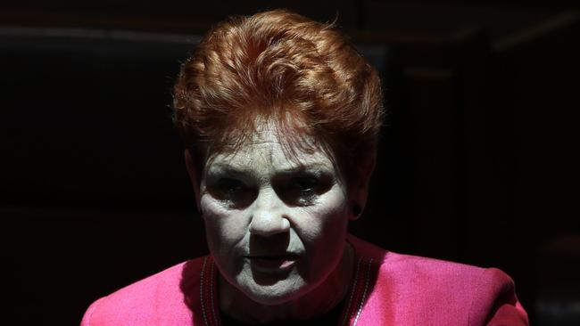 Senator Pauline Hanson during Senate Question Time in the Senate Chamber in Parliament House in Canberra. Picture: Gary Ramage