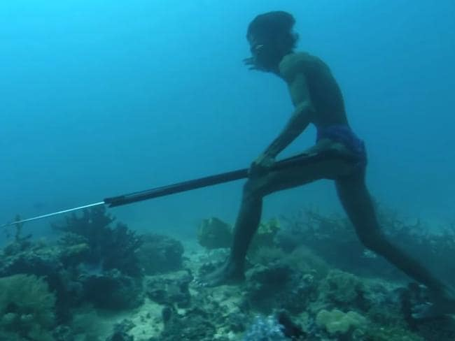 Spleens were larger in the Bajau people whether they were regular divers or not.
