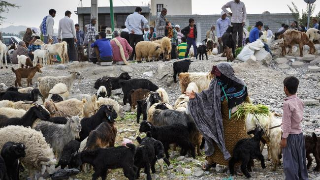 Goats aplenty at the 'Panjshambe Bazaar'. Photo: Brook Mitchell