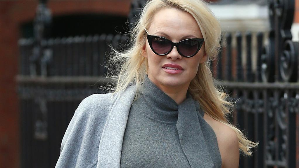 Former Baywatch star Pamela Anderson and Wikileaks founder Julian Assange have formed a connection. Pictured, she visits him in the Ecuadorian Embassy in London. Picture: GettyPhoto by Neil Mockford/GC Images.
