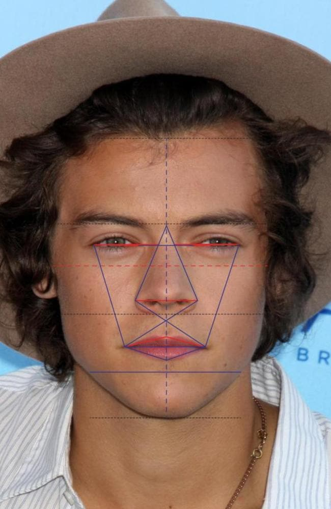 Harry Styles came in fourth place, according to the ratio. Picture: Dr Julian De Silva