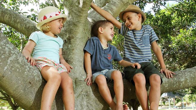 Sky Whittle, 3, of Oxley and Archie, 4, and Harry Freund, 7, of Jindalee play at Rocks Riverside Park in Seventeen Mile Rocks. Picture: Claudia Baxter