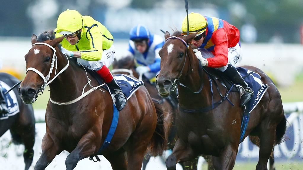 Hetty Heights, right, has impressed in two recent trials. Picture: Simon Bullard