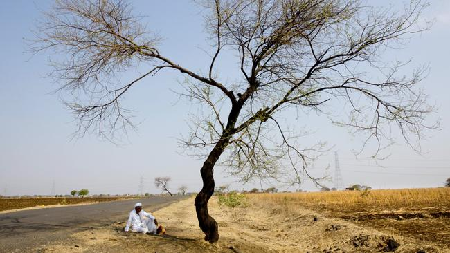 India's drought is seriously out of control.