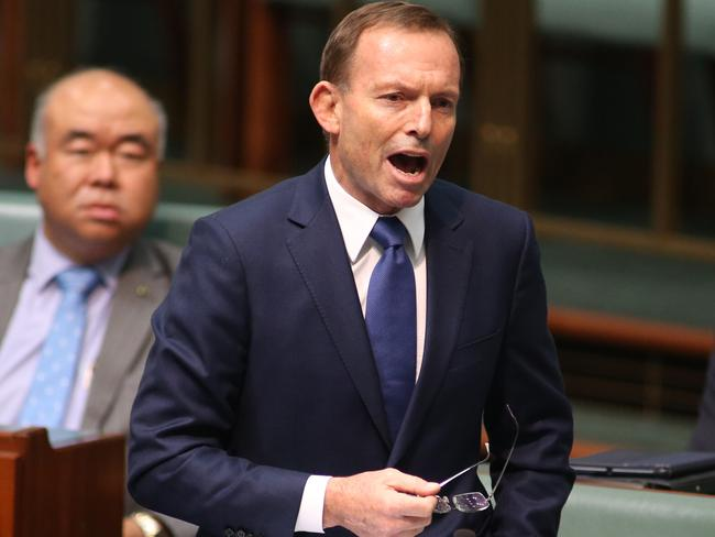 Tony Abbott claimed he had been misrepresented by Labor during an impassioned speech at Question Time. Picture: News Corp