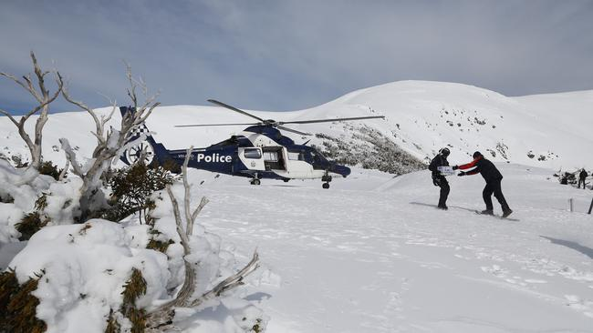 Searchers on top of Mt Bogong. Picture: Simon Dallinger.