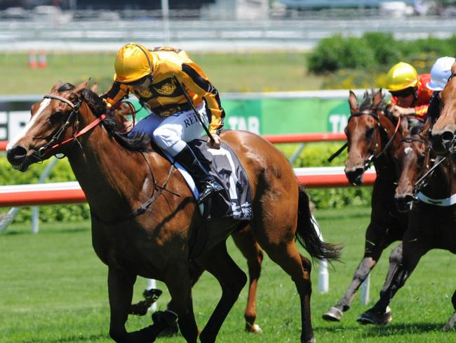 Miss Alibi should have won last start and is nicely drawn in barrier one with her lightweight. Picture: Simon Bullard.