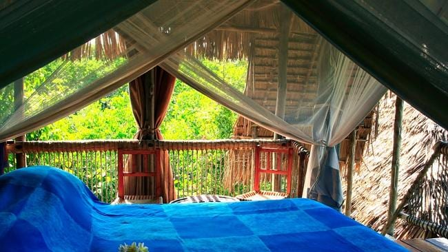 Visitors stay in tree houses at Chole Minji. Image courtesy of Chole Minji.