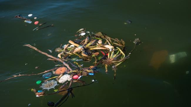 Debris floats near the Rio-Niteroi bridge at the Guanabara Bay in Rio de Janeiro.