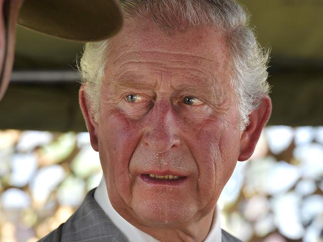 Prince Charles, 69, is expected to take up the role. Picture: Patrina Malone