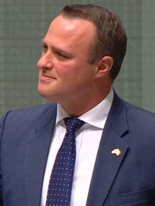 Tim Wilson popped the question in parliament.