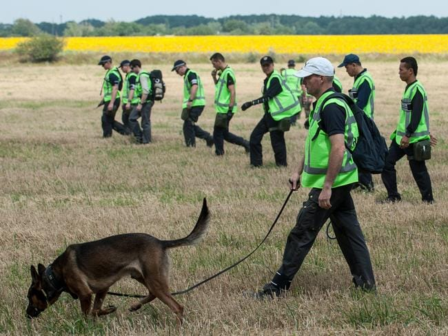 Grim task ... Australian, Malaysian and Dutch investigators examine the area of the downed Malaysia Airlines Flight MH17. Picture: AP