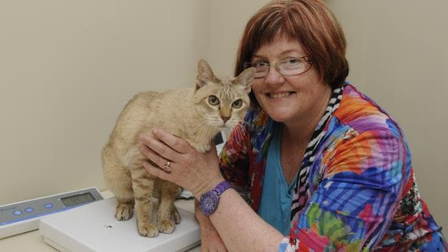 Dr Kim Kendall with her cat.