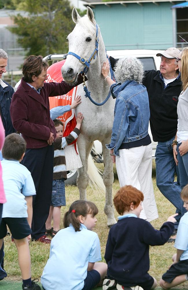 1992 Melbourne Cup winner Subzero visiting Oberon Primary School as part of the Subzero Goes to School Program.