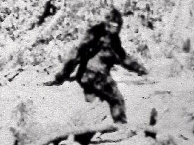 A still from the infamous 1967 film purporting to show Bigfoot. Picture: AP