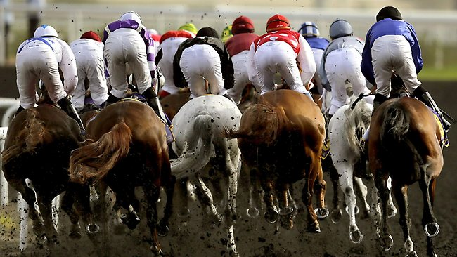 Jockeys compete in the Dubai Kahayla Classic horse race at the Dubai World Cup, the world's richest horse race.