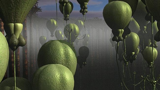 "All shapes and sizes ... alien plants that could grow to size of hot air balloons and float above the planet's surface, from TV program ""Extraterrestrial""."