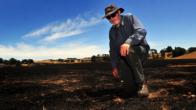 Sheep farmer Neville Oddie checks the damage from the fire on his Chepstowe property. Picture: Nicole Garmston