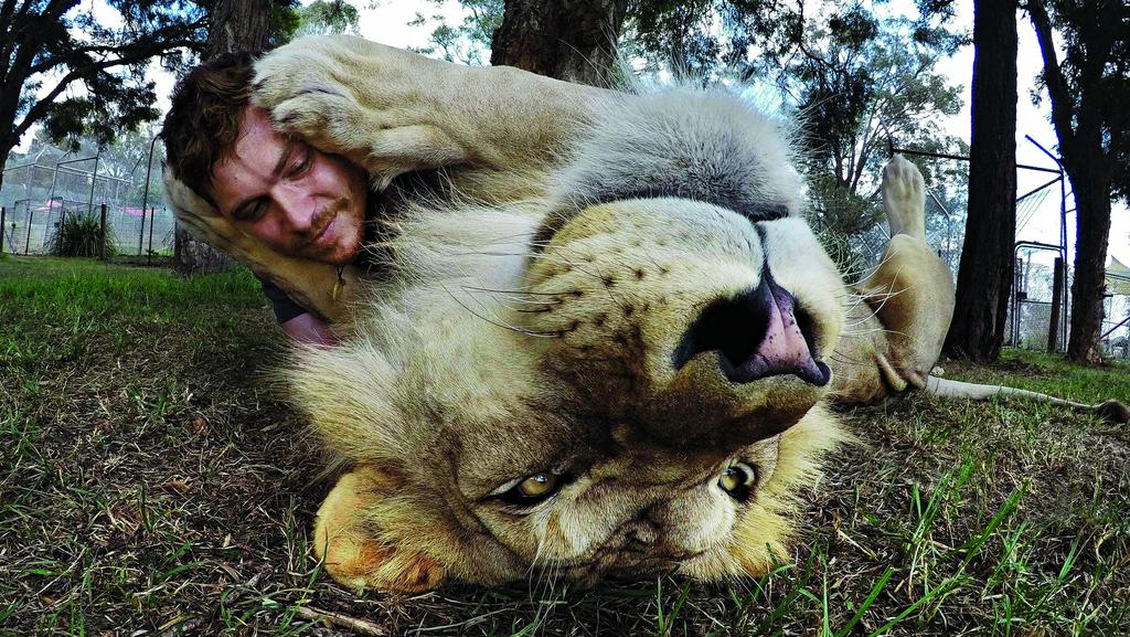 Toby Zerna took what turned out to be an award-winning photo of Kibulu the lion and handler Daniel Lack sharing a hug.