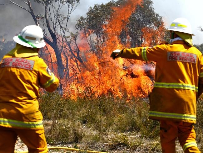 Firefighters prepare the grounds of Bell with back burning operations along the Darling Cuaseway / Picture: Bradley Hunter