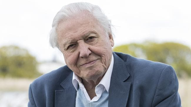 Sir David Attenborough has been suggested as a possible name. (Photo by John Phillips/Getty Images )