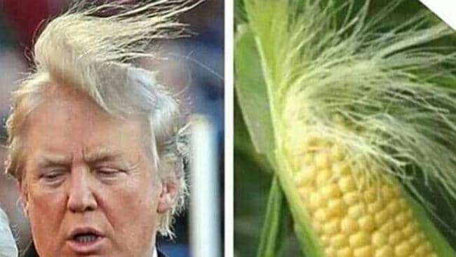 Donald Trump's hair has sparked humour across the globe.