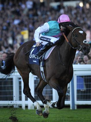 In addition to owning unbeaten champion galloper Frankel (above), Prince Khalid Abdullah also races Sussex Stakes winner Kingman.
