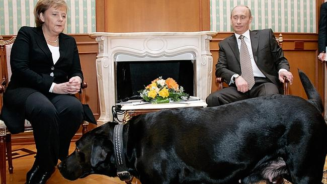 The elephant in the room (apart from Vlad's dog Kuni) is gay rights, and that's said to be one reason why German...