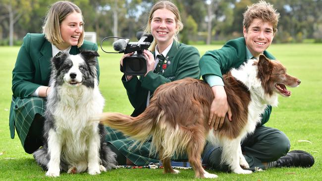 Westminster School students Olivia Ricciardi, 17, Lily Drummond, 18, and Nat Drummond, 15, with dogs Judd and Calypso. Picture: AAP/Keryn Stevens