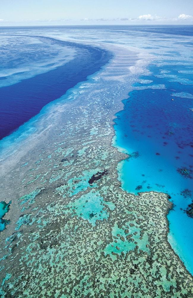 UNESCO expressed its concern about damage to the Great Barrier Reef just last week. Picture: AP