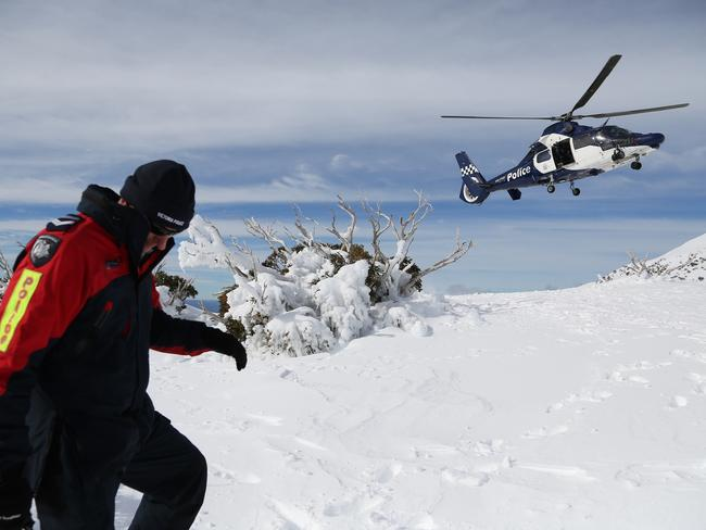 Police search team on Mt Bogong today.