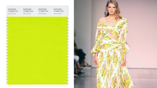 Lime Punch & Zimmerman SS18 Photo: Getty Images