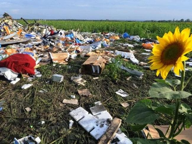 A picture taken on July 19 at the crash site. Picture: AFP PHOTO/DOMINIQUE FAGET