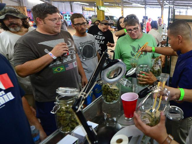 No shortage of demand ... chopsticks are used to carry the buds as card-carrying medical marijuana patients watch a weighing.