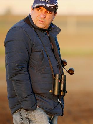 Trainer Mark Kavanagh watches his runners in the morning sun. Picture: Colleen Petch