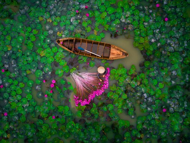 2nd Prize, People: Waterlily, Vietnam ... Picture: helios1412/4th International Drone Photography Contest