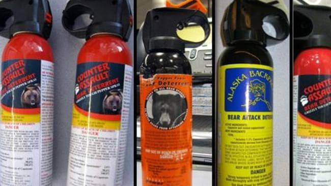 Protect yourself from bears while on holiday with a few cans of spray. Picture: Transportation Security Administration