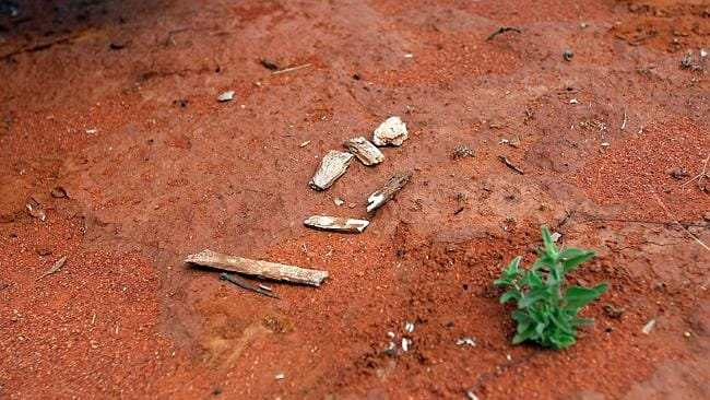 Bones found on the side of the Stuart Highway at Barrow Creek.