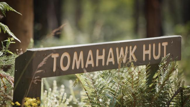 David and his brother Peter had planned to return to Tomahawk Hut, but David never made it.