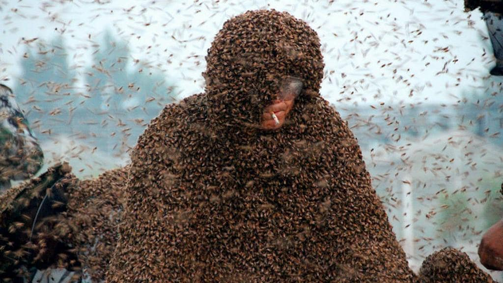 What's the buzz ... Chinese beekeeper Gao Bingguo is fully covered with bees as sets a new Guinness World Record for 'most bees on a human body' in Liangzhuang town, Tai'an city, China. Picture: Liu hongjie