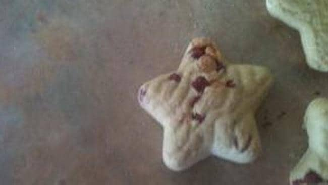 The Purina DeliBakie Dog Snacks look anything but appealing, except perhaps if you're a dog. Picture: myfoodeeblog