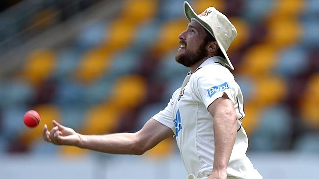 Luke Feldman after taking a spectacular catch to dismiss Ashton Agar at the Gabba.