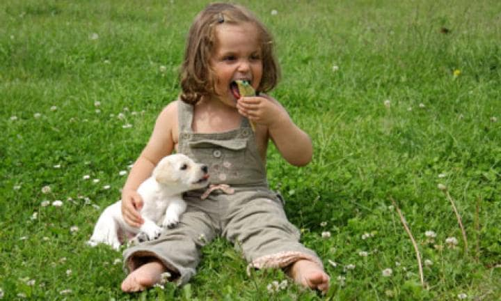 Save yourself the work! Get kids to look after their pets