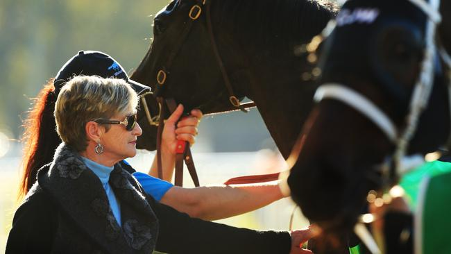 Wendy Walter, widow of the late Guy Walter, at Warwick Farm on Wednesday.