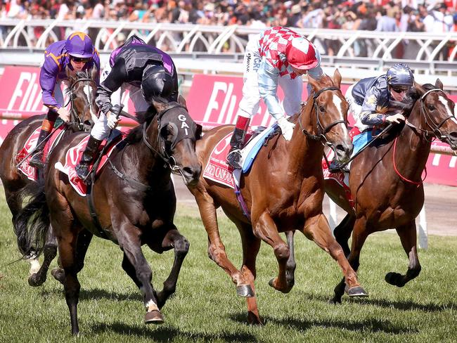 Warrior international and dual runner-up Red Cadeaux (second from right) will return for his fourth Melbourne Cup.
