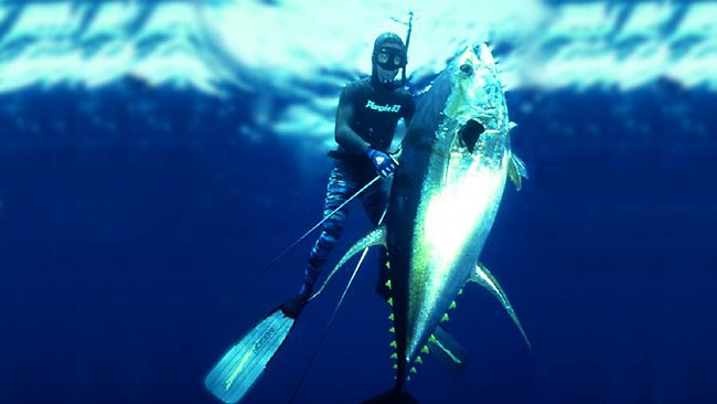 Diver Greg Pickering with his 307lb IBSRC world record yellowfin Tuna. Picture: Terry Maas.